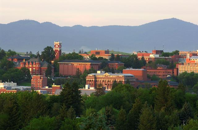 Washington-State-University-Online-Bachelor's-of-Social-Science